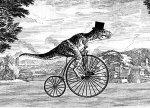Biking in the city: a bucolic, urbanglory