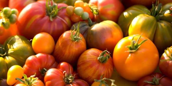 Heirloom maters